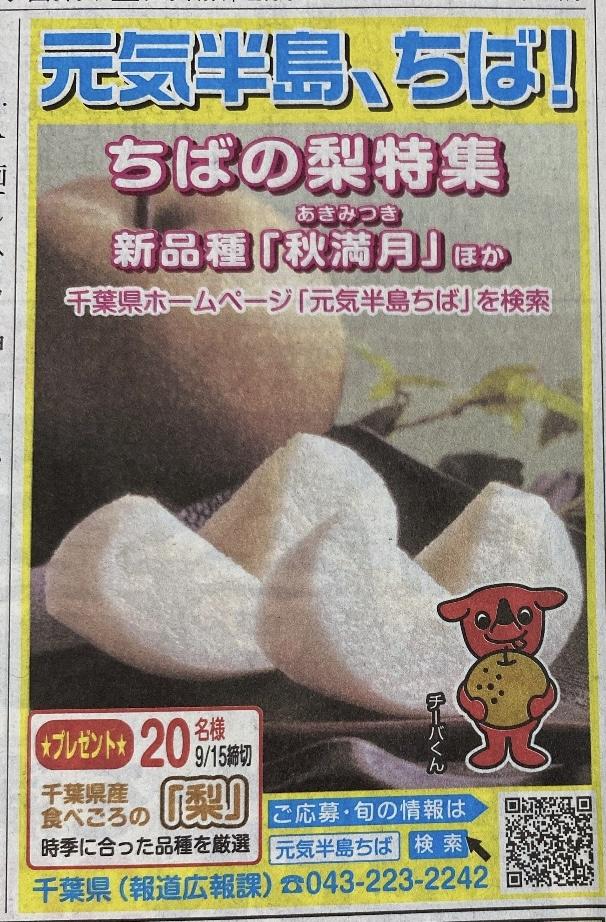 [20名当選]千葉県産 食べごろの梨が当たる!元気半島、ちば!プレゼントキャンペーン