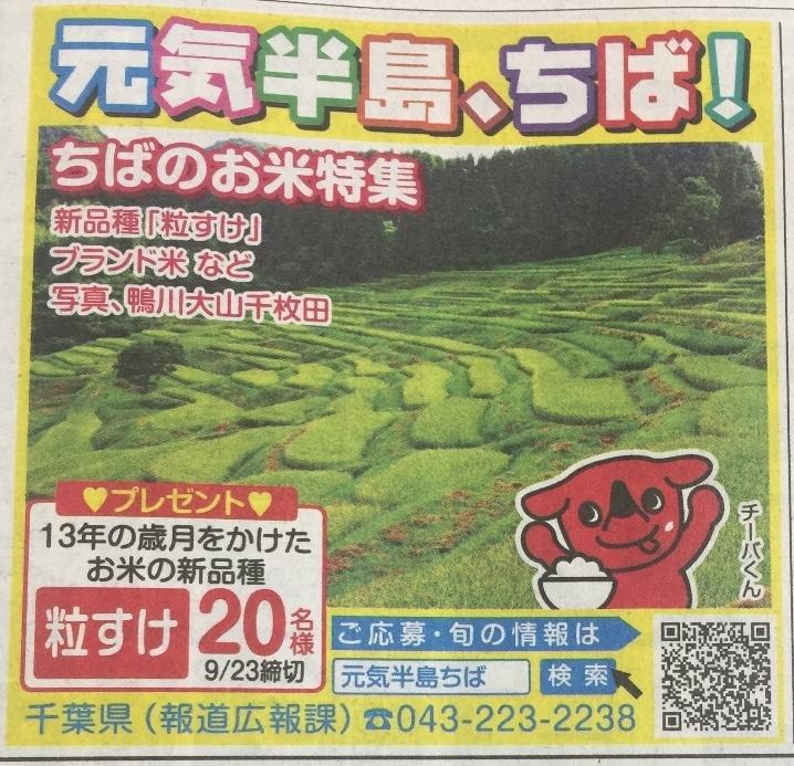[20名当選]お米の新品種 粒すけが当たる!元気半島、ちば!プレゼントキャンペーン