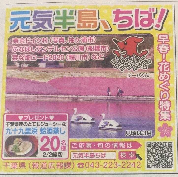 [20名当選]九十九里浜 蛤酒蒸しが当たる!元気半島、ちば!