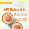[11名当選]ルンバが当たる!#円熟みつけた プレゼントキャンペーン!