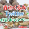 [10名様当選]QUOカードが当たる!春のくるみTwitterクイズキャンペーン!