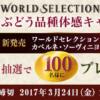 [100名様当選]ワイン2本セットプレゼント!ぶどう品種体験キャンペーン!