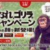 [毎日1名様当選]明治  おれ、ゴリラ。QUOカード1万円分が当たる!