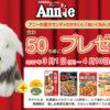 [50名様当選]丸美屋「アニー」グッズ&丸美屋商品セットプレゼントキャンペーン!
