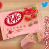 [50名様当選]「キットカット ミニ オトナの甘さ ラズベリー 12枚」  1袋をプレゼント!