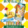 [300名様当選]キリン氷結  ロコロコパイン新発売記念  旅する氷結(R)プレゼントキャンペーン!